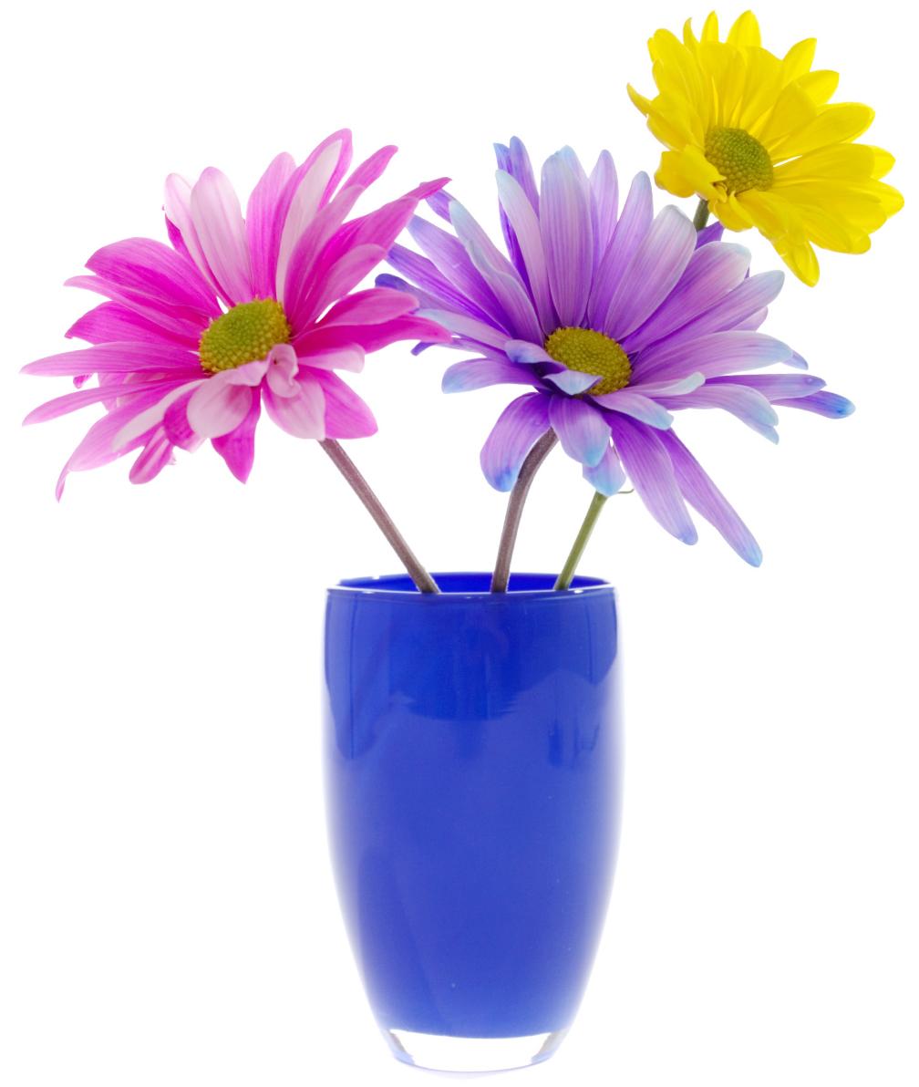 Adesivi follia adesivo murale vaso di fiori for Fiori da vaso