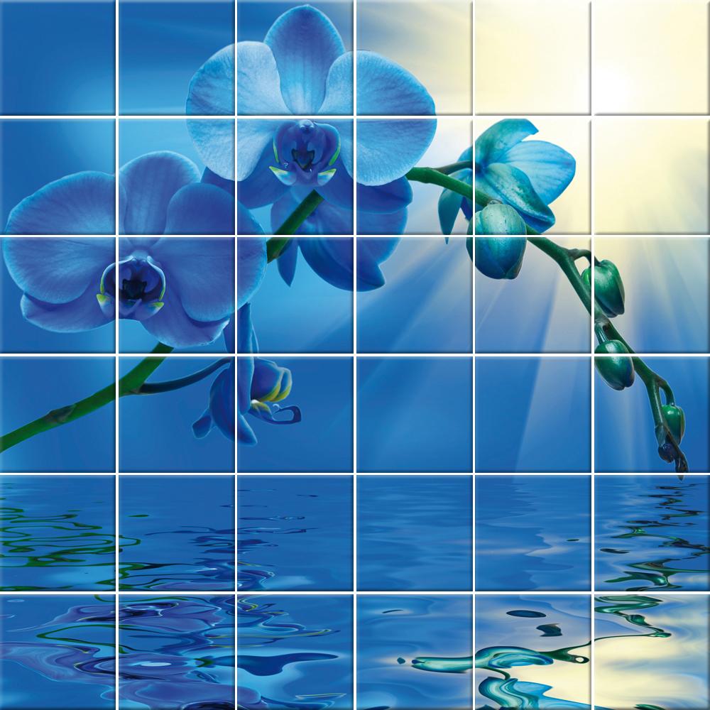 Adesivi follia adesivo per piastrelle fiore for Adesivi per piastrelle doccia