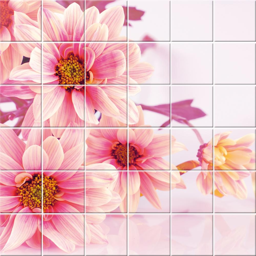 Adesivi follia adesivo per piastrelle fiori for Adesivi per piastrelle doccia
